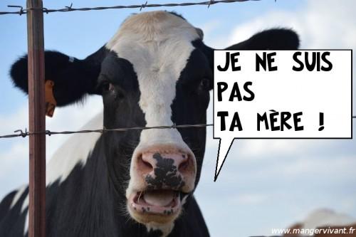 Danger produits laitiers