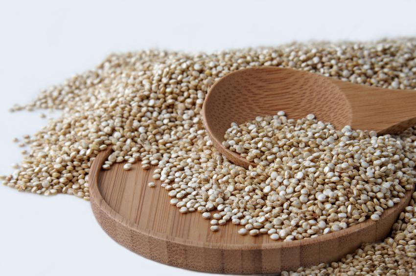 Céréales protéines végétales