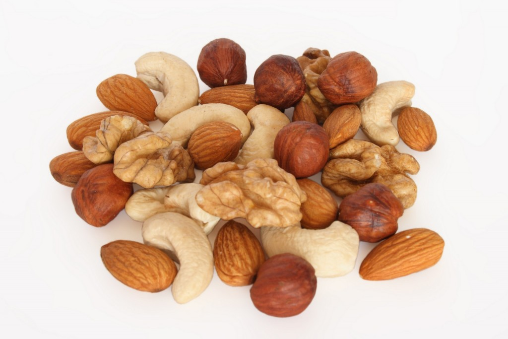 Fruits oléagineux protéines végétales