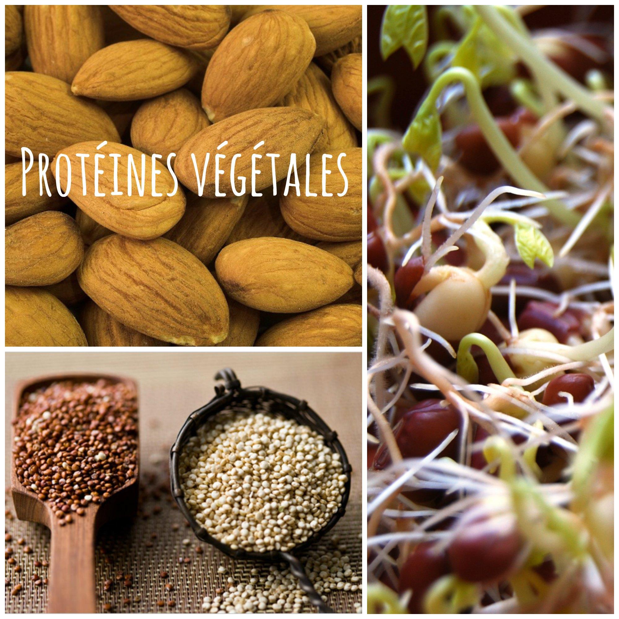 aliment+riche+en+proteine+pauvre+en+graisse