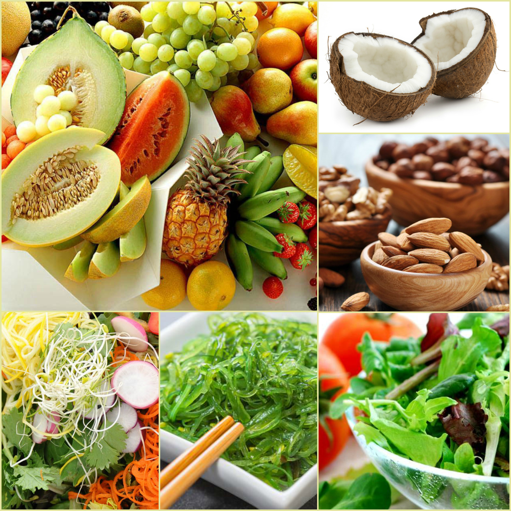 L 39 alimentation vivante le secret d 39 une bonne sant - Cuisine vivante pour une sante optimale ...