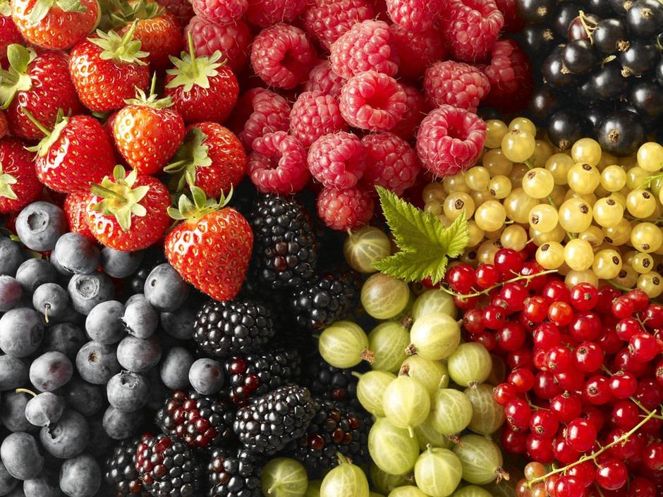 sucre fruits