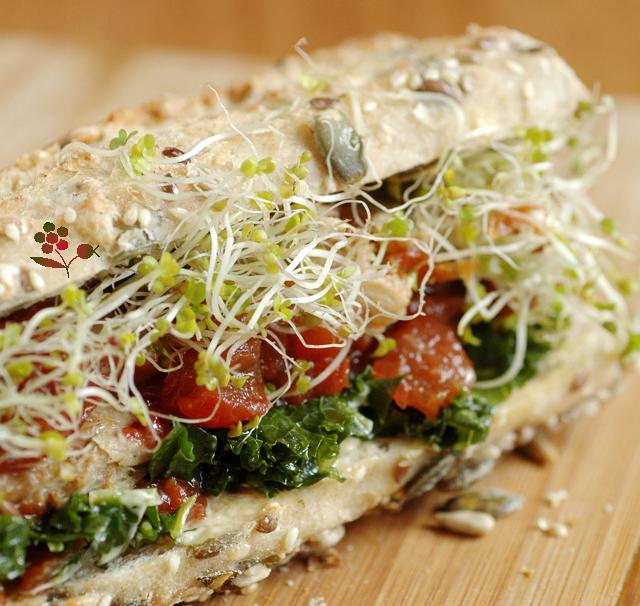 sandwich graines germées