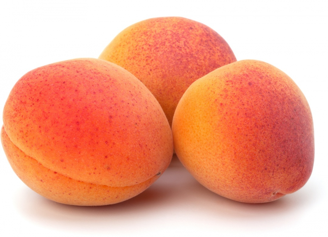 antioxydants abricot