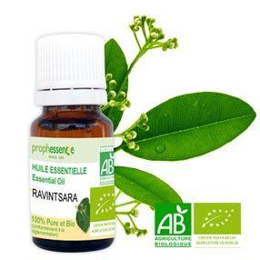 10-ravintsara-huile-essentielle
