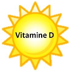 8-vitamine-d-lumiere